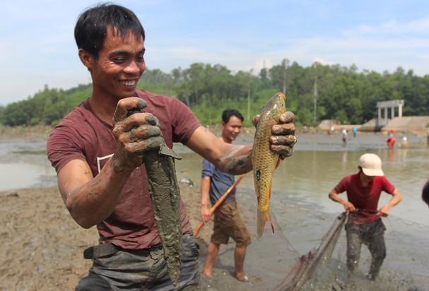 Nằm mơ thấy bắt cá là điềm gì, con số nào mang lại may mắn?