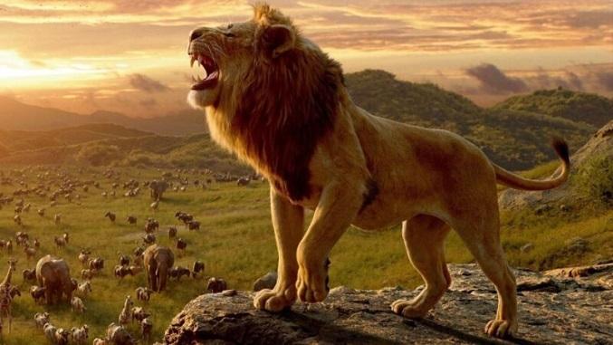 Nằm mơ thấy sư tử điềm báo gì, lành hay dữ? Là số mấy?